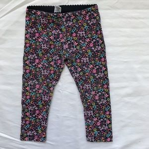 Tea Collection Floral Pants- 2T